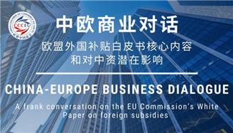 欧盟中国商会组织《欧盟外国补贴白皮书》研讨会