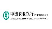 中国农业银行(卢森堡)有限公司